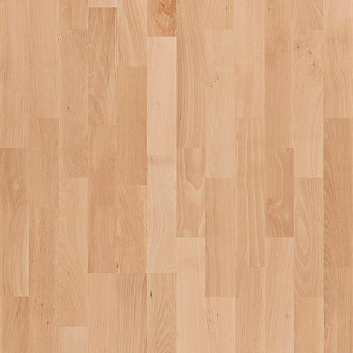 Activity Floor Beech Fsc