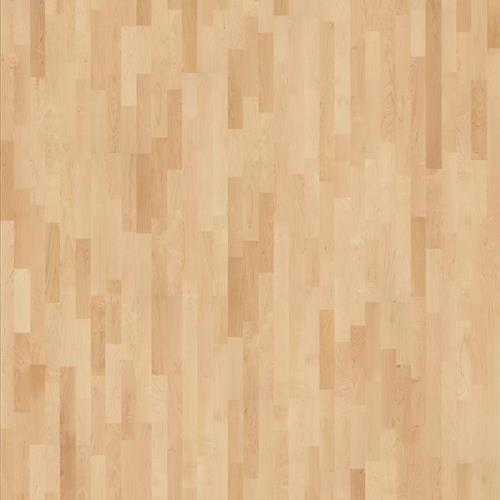 American Naturals Collection American Naturals Hard Maple Toronto