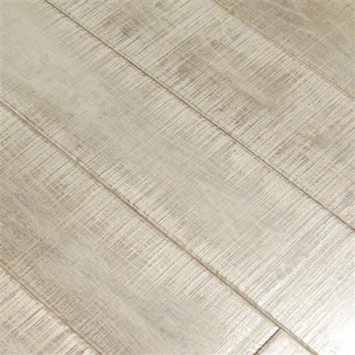 Lexington Lipizzan