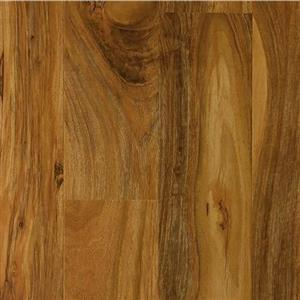 Laminate BABYGRANDCOLLECTION BG8 PacificWalnut