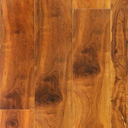 Laminate ACACIA LAMINATE 800 COLLECTION Acacia Hazlenut SLF803 main image