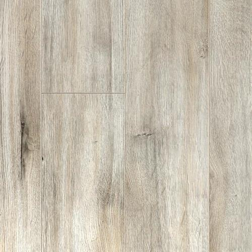 Vienna Collection Oak Silverback