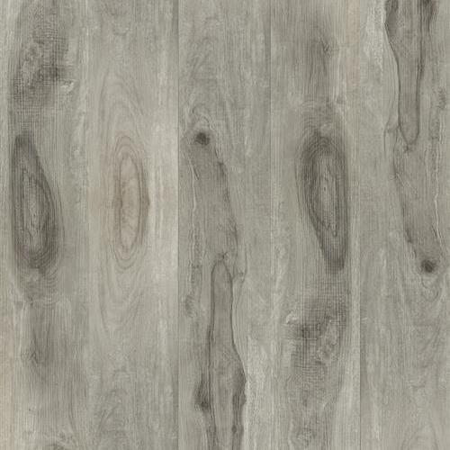Density Collection Wild Grey