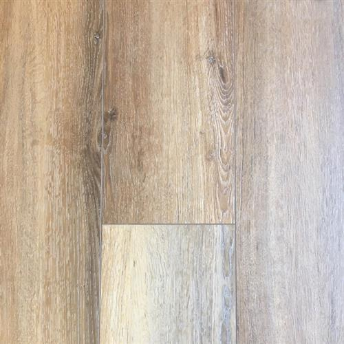 Density Plus Oak Tortilla