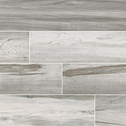 Carolina Timber White - 6X36