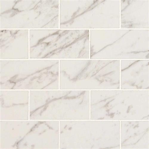 Pietra Carrara Polished Mosaic