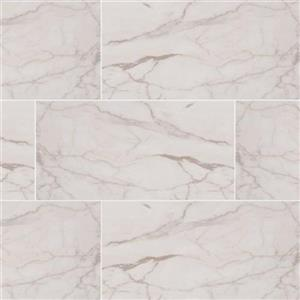 CeramicPorcelainTile Essentials NWHIVEN1224 WhiteVena