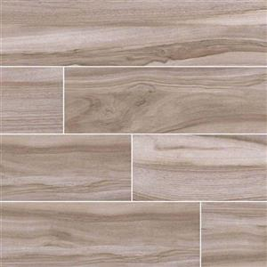 CeramicPorcelainTile Aspenwood NASPASH9X48 Ash