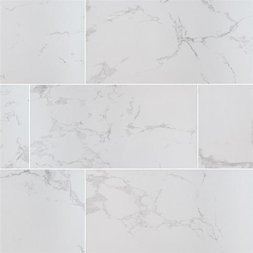 Swatch for Carrara   12x24 Matte flooring product