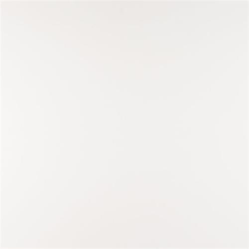 Q Premium Natural Quartz Arctic White