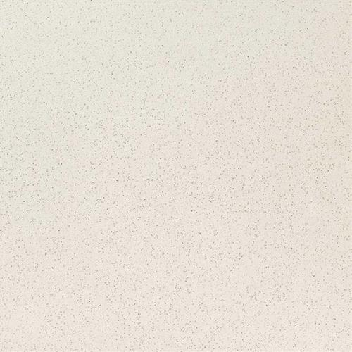 Q Premium Natural Quartz Bianco Pepper