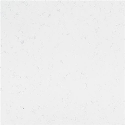 Q Premium Natural Quartz Carrara Morro