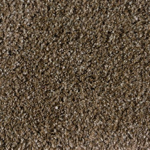 Shaggy Plush Metallic Beige