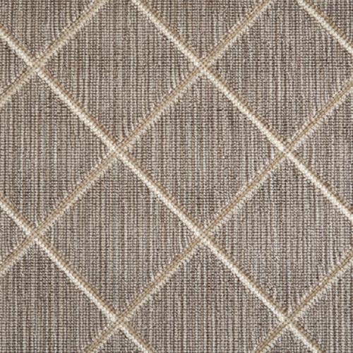 Darwin in Desert - Carpet by Stanton