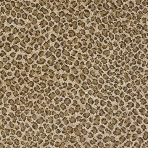 Stanton/royal Dutch in Beige Brown - Carpet by Stanton