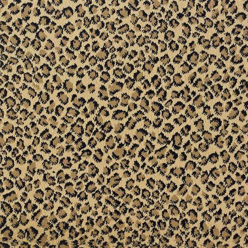 Stanton/royal Dutch in Prowl - Carpet by Stanton