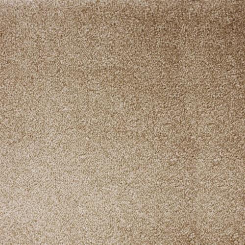 Atelier Marquee - Starry Night Sandstone