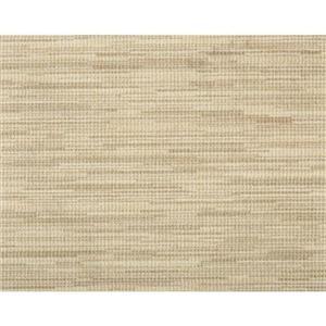 Carpet Acceleration ACCL-SDD Saddle