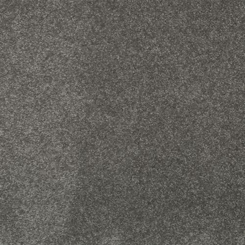 Stylish Grace Polaris 955