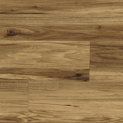 A close-up (swatch) photo of the Coronado flooring product