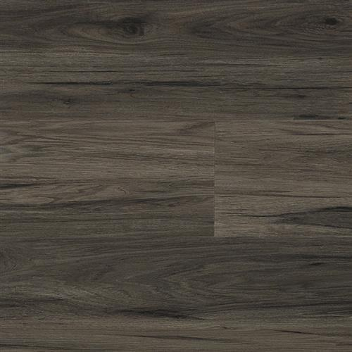 A close-up (swatch) photo of the Oceanside flooring product