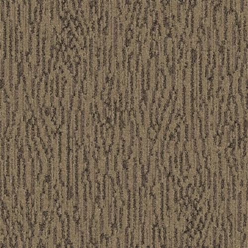 Splendid Driftscape 3584