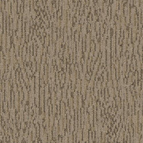 Splendid Sandstone 4583
