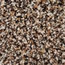 Carpet Chandler Heights 12' Spiced Peppercorn 5053 thumbnail #1