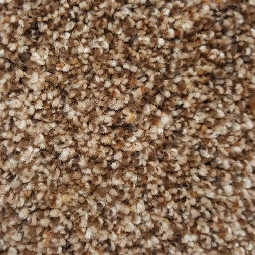 Carpet Chesterfield 12' Frosted Cappccino 5450 main image