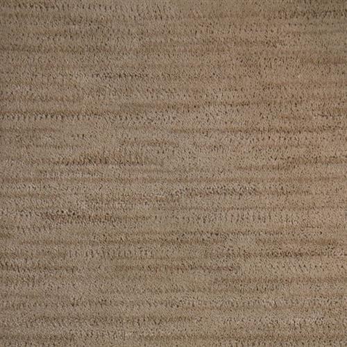 Striation Sandstone 4583