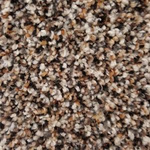 Carpet Charleston12 5053 SpicedPeppercorn