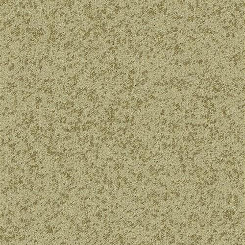Tailored-Shoreline Sandstone 4583