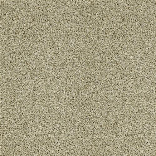 Mesa Verde Sand Castle 306
