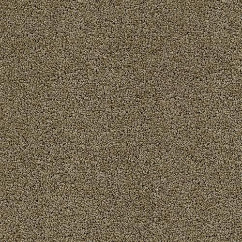 Mesa Verde Mocha Latte 309