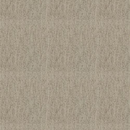 Flagstaff Sandstone 4583