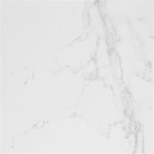 Carrara Blanco Brillo 17X17
