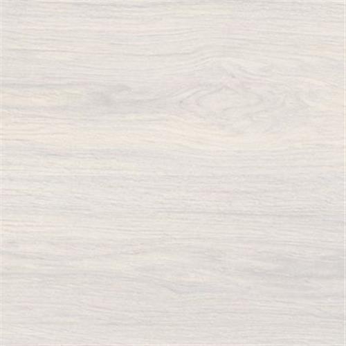Tanzania White 10X59