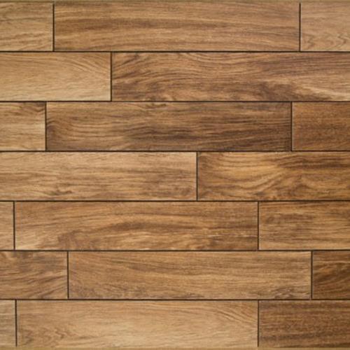 Sandal Wood Driftwood
