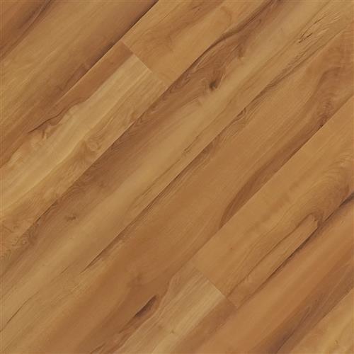 Soledo Plank Msp 452
