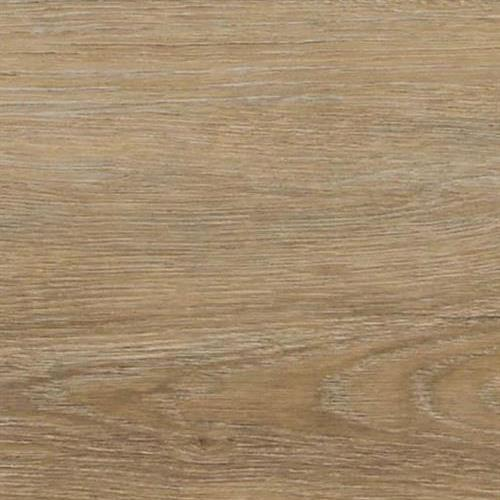 Regalia Driftwood