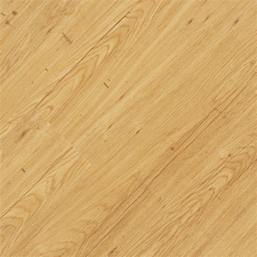 <div><b>Application</b>: Commercial,Residential <br /><b>Category</b>: LVP (Luxury Vinyl Plank) <br /><b>Installation Method</b>: Glue Down <br /></div>