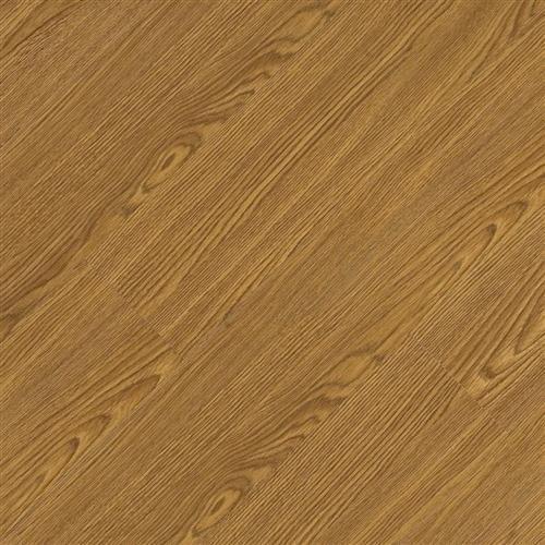 Pacific Plank App 650