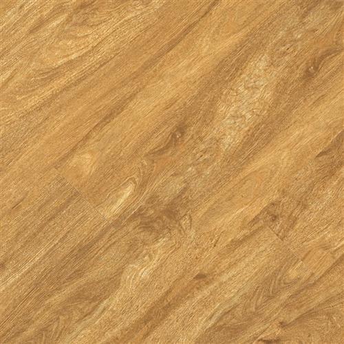 Pacific Plank App 653