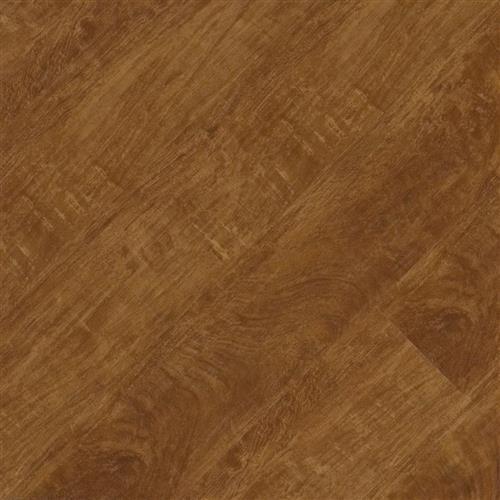 Pacific Plank App 654