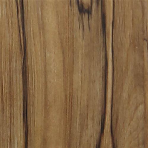 Sherbrooke Chestnut
