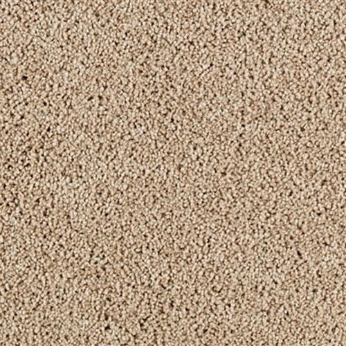 Karastan Carpets Simply Spectacular
