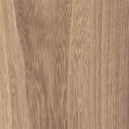 Traditions 8MM Almond Maple-997