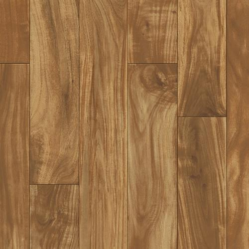 Traditions - Ultimate Robinia - 516 516