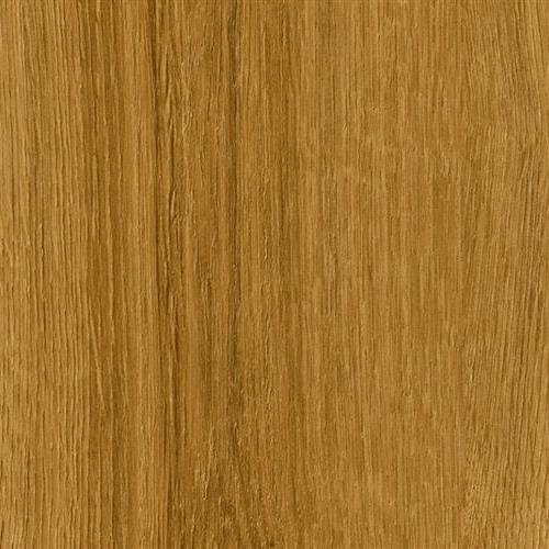Vision - Wood - Glue Down Spring Oak-60122 Gd