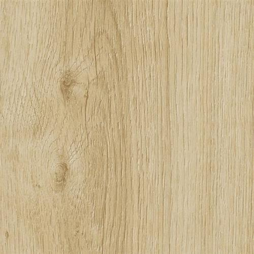 Vision - Wood - Glue Down Spring Oak-60123 Gd
